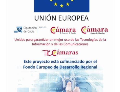 APADIS Bahía de Algeciras realiza un proyecto con TIC Cámara de Comercio.